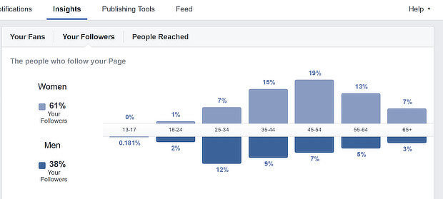 Képernyőkép a demográfiai adatokról Facebook Insigth-ból